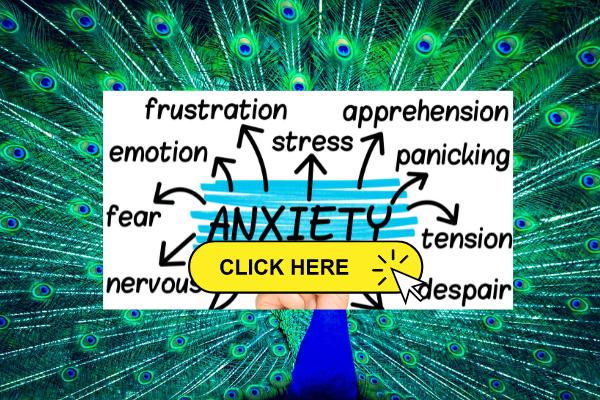 Social Anxiety Treatment Plan